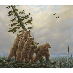 Robert Bissell - Blowdown!