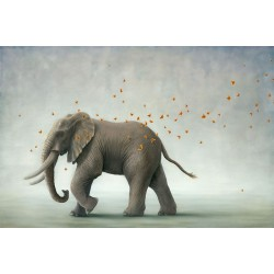 Robert Bissell - HERO (Elephant)